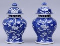 Chinese Pair of Covered Vases