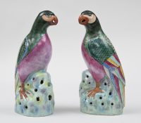 Pair Chinese Famille Rose Parrots