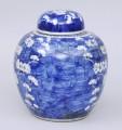 Large Chinese Prunus Vase